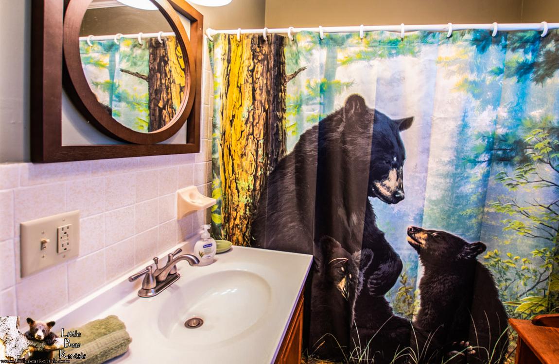 Bear Shores - Hiawassee