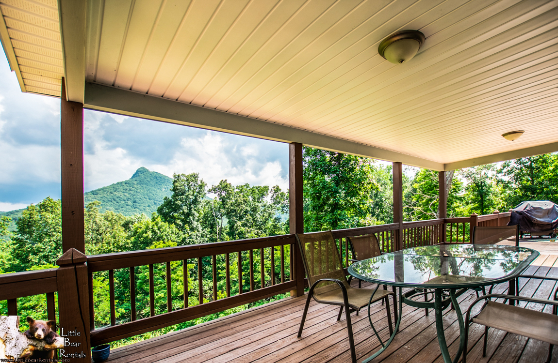 Mossy Oaks Lodge - Hiawassee, GA