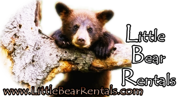 Little Bear Property Management